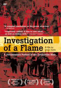 InvestigationofaflameDDcover